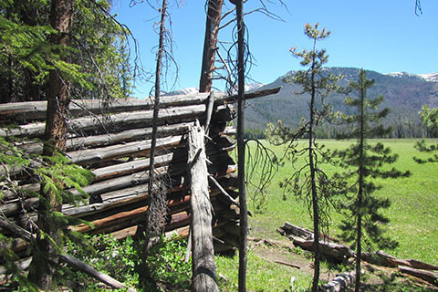Log Cabin ruins in Big Meadow
