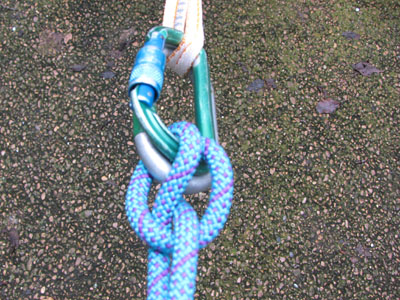 clove hitch and carabiner