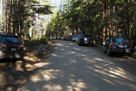 Cars lining Half Moon Road, parking to access the North Mount Elbert Trailhead