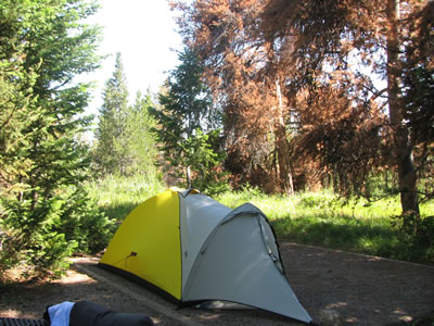 Jenny Lake, tent only, Campground