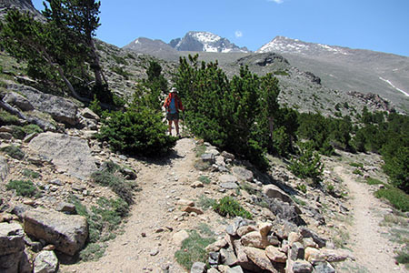 Amy switchbacking on the North Longs Peak trail