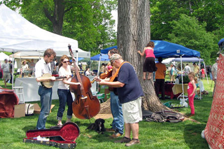 Bluegrass band playing in the Park