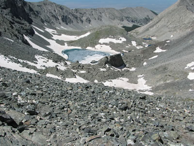 scree field