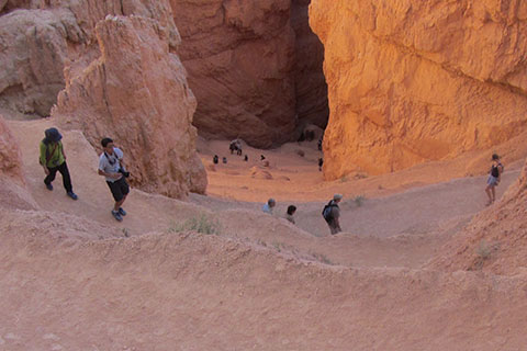 Crowds of hikers climb the trails of Bryce Canyon Natioanl Park