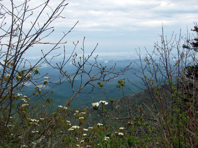 view of Gatlinburg from LeConte