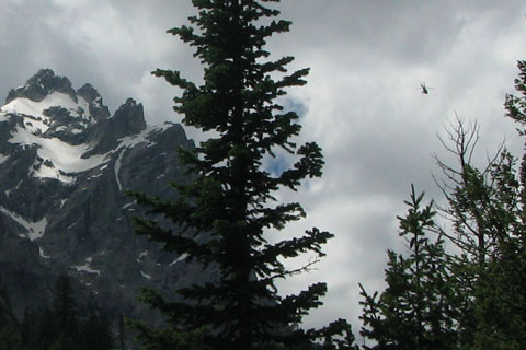 helicopter in the tetons
