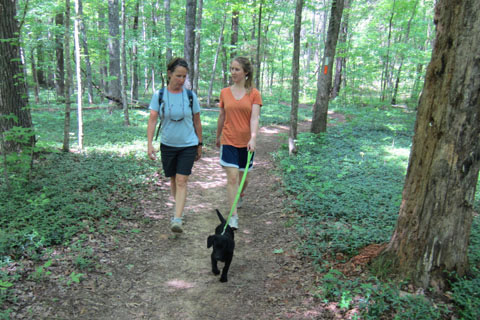 Loop trail with hikers and dog