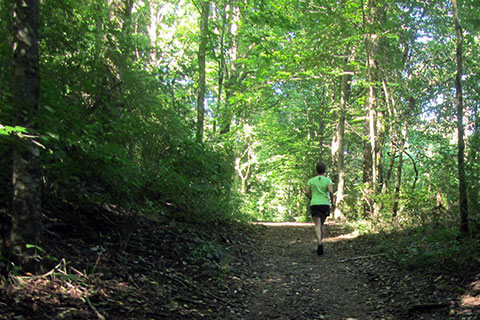 Running on the Old Natchez Trace