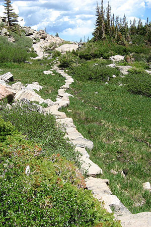 Trail leading to Sky Pond uses stepping stones to avoid damage to the drainage.
